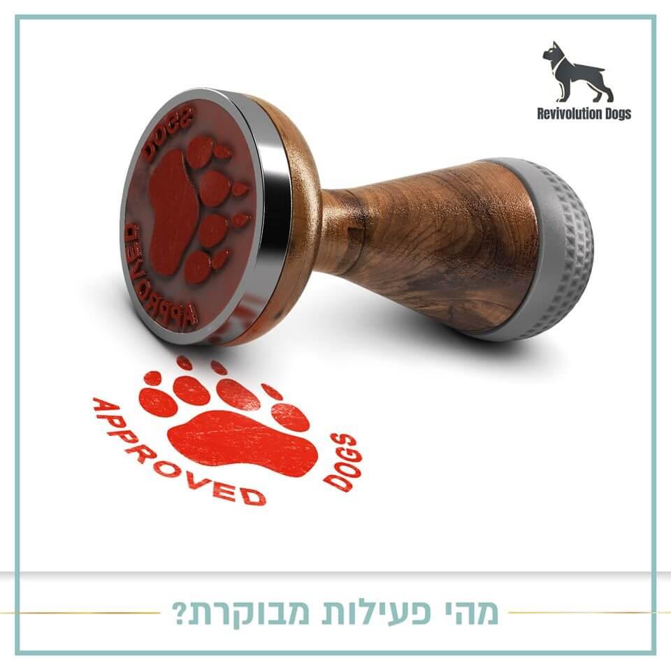 ייבוא-כלבים-לישראל-עם-רביבולושיין-דוגס